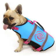 JETPILOT 2019 DOG PFD BLUE